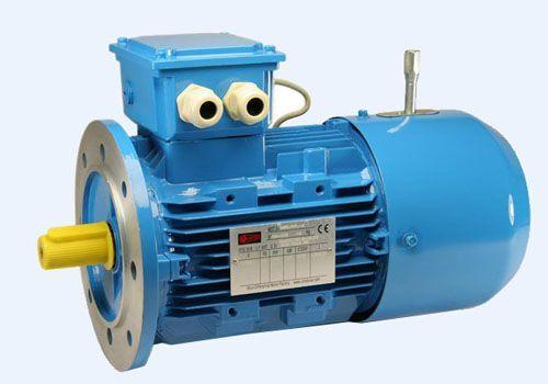 Электродвигатель c тормозом MSEJ