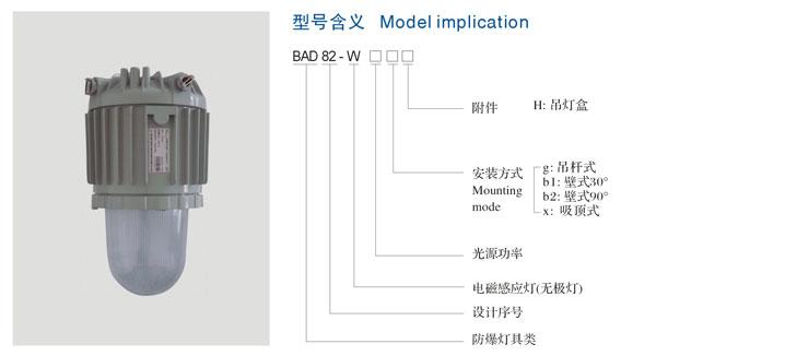 bad82-w系列隔爆型防爆灯(电磁感应灯)(Ⅱc)