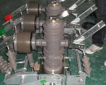 zwb-12固封极柱式高压双电源切换装置